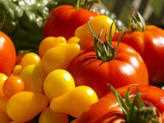 eating organic in banderas bay