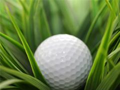Puerto Vallarta Golf, The Ball