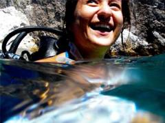 Summertime Scuba Diving -